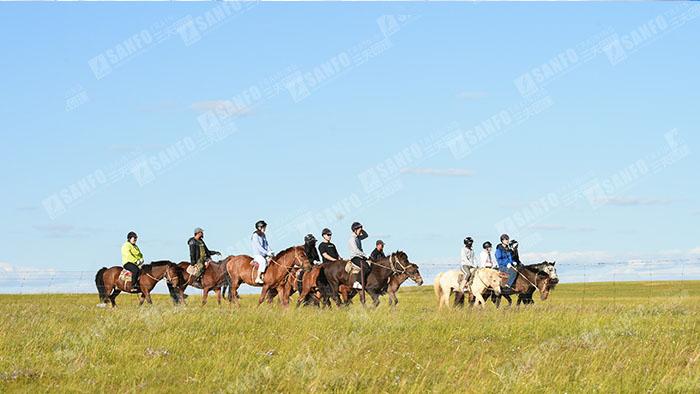 三夫团建-草原之旅