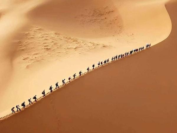 青少年沙漠成长营